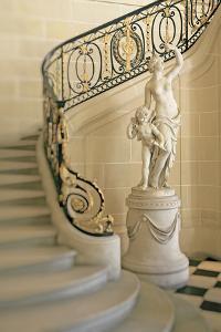 Statuesque Elegance by Carina Okula