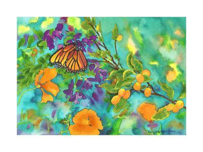California Monarch