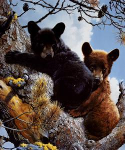 High Adventure by Carl Brenders