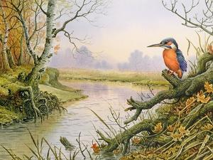 Kingfisher: Autumn River Scene by Carl Donner