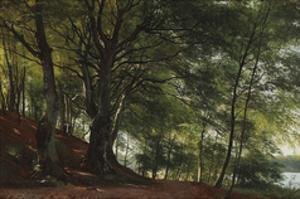 Forest Scene from Soro, Denmark by Carl Frederic Aagaard