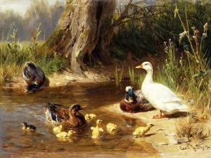 Ducks at the Water's Edge by Carl		 Jutz