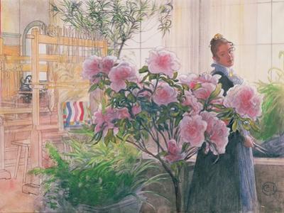 Azalea, 1906 by Carl Larsson