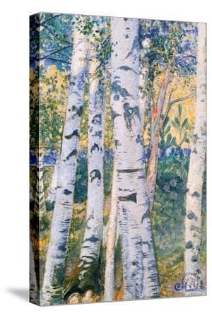 Birch Trees, 1910