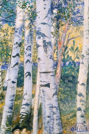 Birch Trees, 1910 by Carl Larsson