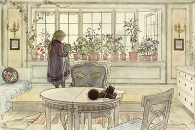 Flowers on the Windowsill, from 'A Home' Series