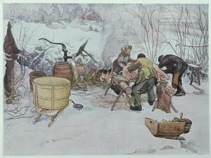 """Killing the Pig,"""" Illustration for """"My Little Farm,"""" Published in Sweden, 1904 by Carl Larsson"""