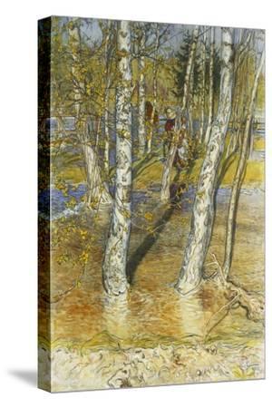 Springflood, 1902