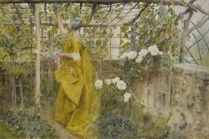 The Vine, 1884 by Carl Larsson