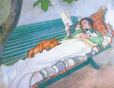 Woman Reading on a Bench, with Cat & Dog