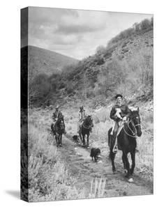 Basque Shepherder Bertrand Borda Carring a Stray Lamb Back to the Herd by Carl Mydans
