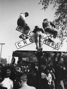 Kids Hanging on Crossbars of Railroad Crossing Signal to See and Hear Richard M. Nixon Speak by Carl Mydans