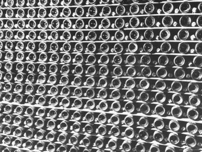 Rows of Wine Bottles