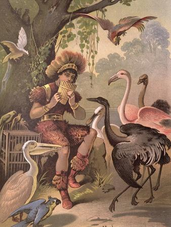 Papageno the Bird-Catcher, from 'The Magic Flute' by Wolfgang Amadeus Mozart (1756-91)