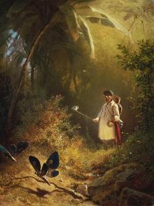 The Butterfly Catcher by Carl Spitzweg