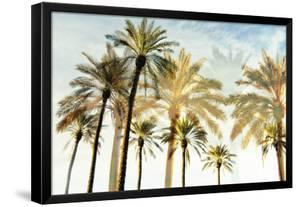 Palm 3 by Carla West