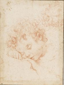 Tête d'enfant dormant et détail de chevelure bouclée by Carlo Dolci