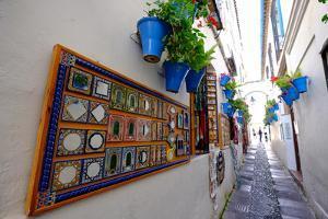 Calle De Las Flores, Cordoba, Andalucia, Spain by Carlo Morucchio