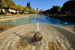 Fountain in the Alcazar De Los Reyes Cristianos, Cordoba, Andalucia, Spain by Carlo Morucchio