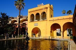 Fuente De Mercurio, Real Alcazar, Seville, Andalucia, Spain by Carlo Morucchio