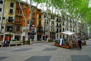 Passeig del Born, the shopping street of Palma, Majorca, Balearic Islands, Spain, Europe by Carlo Morucchio