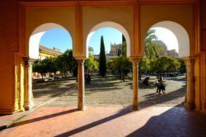Patio De Los Naranjos, Mezquita Cathedral, Cordoba, Andalucia, Spain by Carlo Morucchio