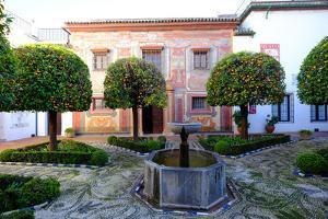 Patio of the Museo De Bellas Artes and Museo Julio Romero De Torres, Cordoba, Andalucia, Spain by Carlo Morucchio
