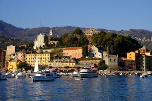 Santa Margherita Ligure Harbour, Genova (Genoa), Liguria, Italy, Europe by Carlo Morucchio
