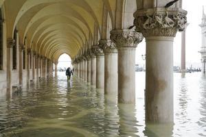 St. Mark's Square during the high tide in Venice, November 2019, Venice, Italy by Carlo Morucchio