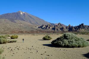 Teide Volcano, Teide National Park, Tenerife, Canary Islands, Spain, Europe by Carlo Morucchio