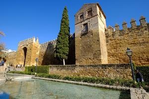 The Arab Puerta De Almodovar and the Mediaeval Wall, Cordoba, Andalucia, Spain by Carlo Morucchio
