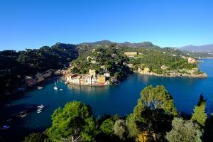 The Bay of Portofino Seen from Castello Brown, Genova (Genoa), Liguria, Italy, Europe by Carlo Morucchio