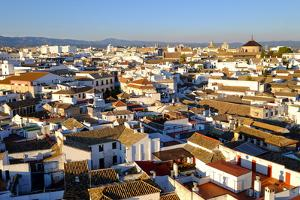 View of Cordoba from the Mezquita Cathedral Bell Tower, Cordoba, Andalucia, Spain by Carlo Morucchio
