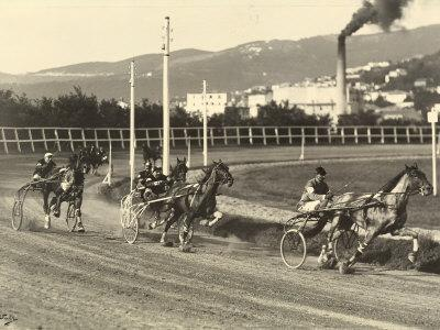 First International Sulky Race 1910 Fall Reunion, at the Montebello Racetrack in Trieste