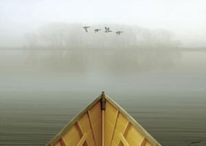 Alone in the Mist 3 by Carlos Casamayor