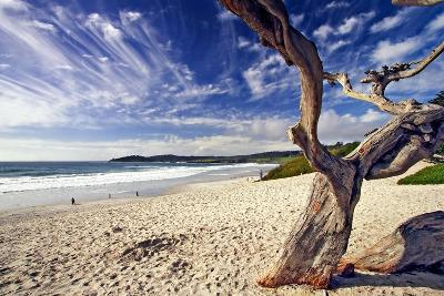 Carmel Beach, California-George Oze-Photographic Print