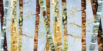 Bark Abstract by Carmen Dolce