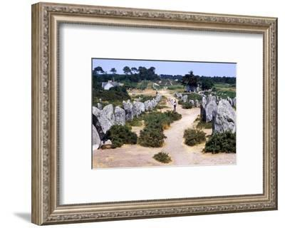 Carnac, Brittany Alignments at Kermario, Neolithic, 4500-2000 BC, (c20th century)-CM Dixon-Framed Photographic Print