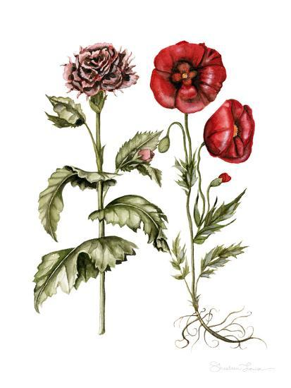 Carnation And Poppies-Shealeen Louise-Art Print