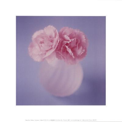 Carnations-Masao Ota-Art Print
