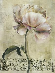 Floral Blush II by Carney