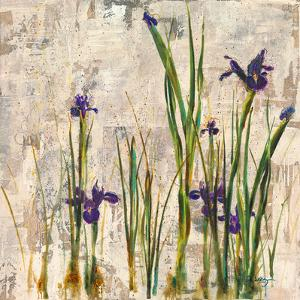 Iris Mist by Carney