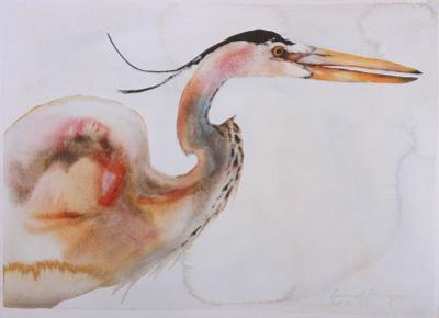 Great Blue Heron by Carol Grigg