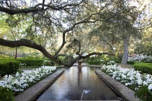 Bellingrath Gardens And Home by Carol Highsmith