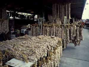 Garlic Strings at the French Quarter Market by Carol Highsmith