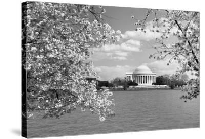 Jefferson Memorial with cherry blossoms, Washington, D.C. - Black and White Variant