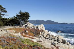 Pacific Coast Pacific Grove and Pebble Beach - Monterey Peninsula by Carol Highsmith