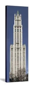Woolworth Building by Carol Highsmith