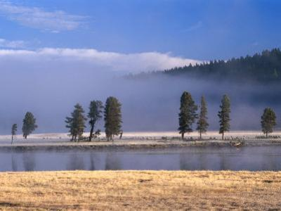 Alum Creek in the Hayden Valley, Yellowstone National Park, Wyoming, USA