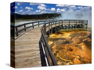 Boardwalk and Bacteria Mat, Black Sand Basin in Yellowstone, Wyoming, USA